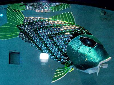 Des poissons robots pour traquer la pollution