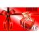 Chèques Cadeaux-50